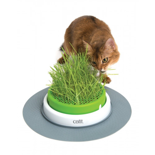 Catit Senses 2.0 Grass Planter*1