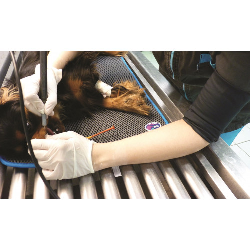 COSYPAD II Veterinary Exam and Recovery Pad X-Large 60 x 115cm*1