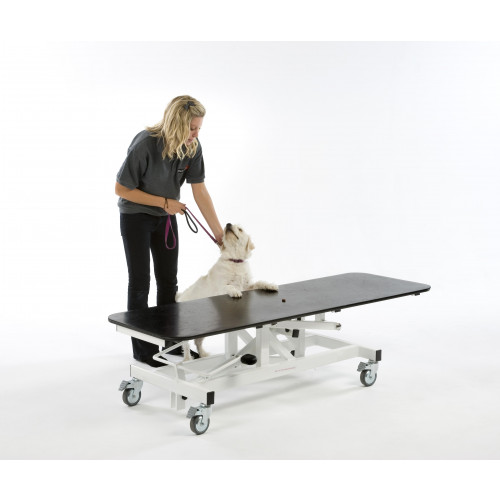 VT200 Veterinary Surgery Table Hydraullic 150x60cm with Tilt & Tie-Downs*1