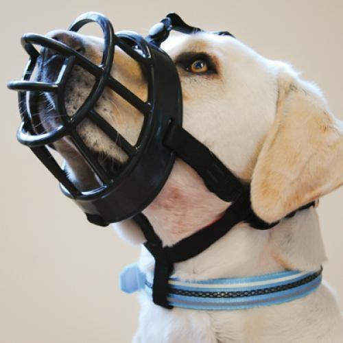 Baskerville Ultra Muzzle Size 1 (Border Terrier, Jack Russell)*1