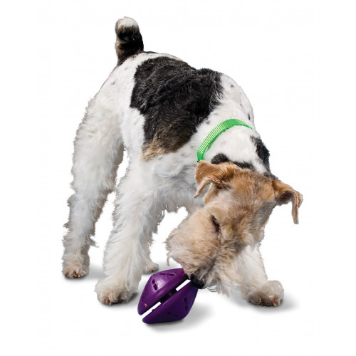 Busy Buddy® Puppy Twist 'n Treat™ - Large*1