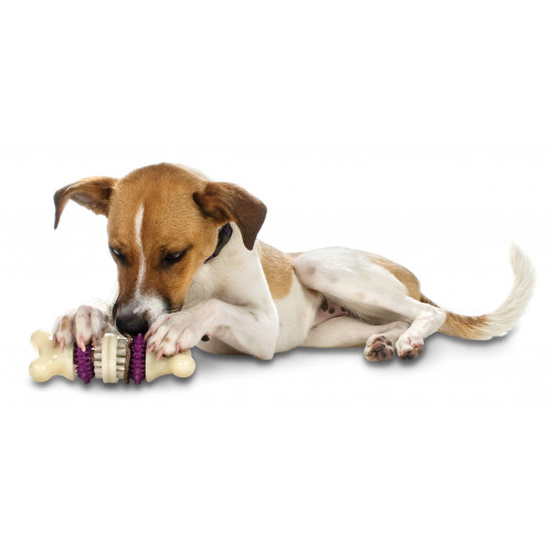 Busy Buddy® Bristle Bone® - Large*1