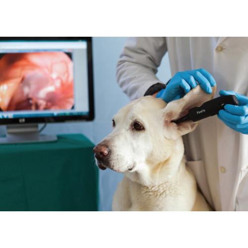 Firefly Veterinary Video Otoscope*1