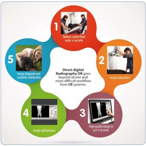 Optimus Digital DR System (Retrofitted)*1