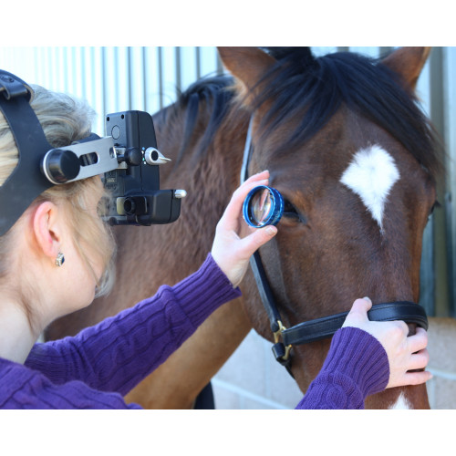 Keeler Vantage Plus Indirect Ophthalmoscope LED/Wireless/Slimline Battery - Optics and Charger*1