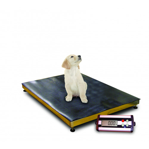 Maxi Professional Veterinary Walk On Scales 200Kg capacity with 50g increments